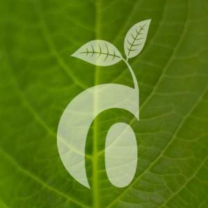 Dekora-Design produziert nachhaltig.